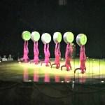 Cirque du Soleil: OVO -Reseña-