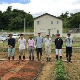 マメジンは今年も畑作業を開始しました