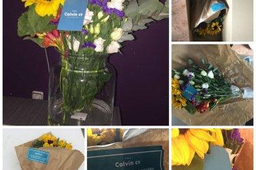 Flores de temporada a casa con TheColvinco.Com