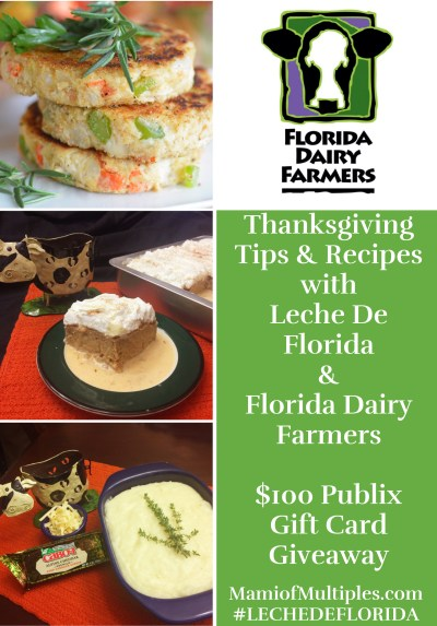 florida-dairy-farmers-holiday-ambassador