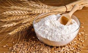 ybc-farina-frumento