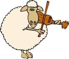 Sheep fiddling