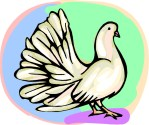 """Wednesday Rewind: Doves' Golub calls out dating services for """"jeopardizing our family structure."""""""