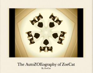 The AutoZOEography of ZoeCat