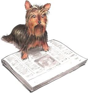 Dog reading The Mammalian Daily