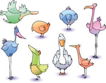 flock-birds