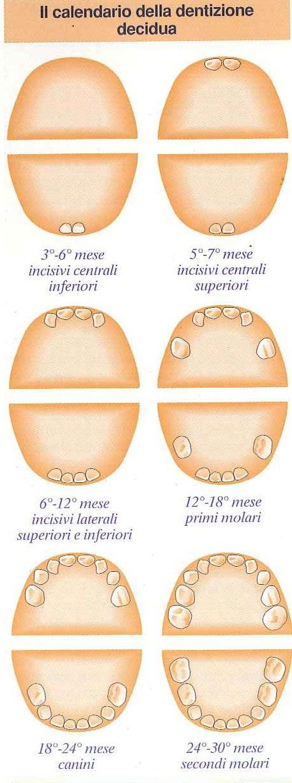 come alleviare i fastidi da dentizione