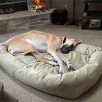 Extra Large Dog Beds by Mammoth - Lifetime Warranty