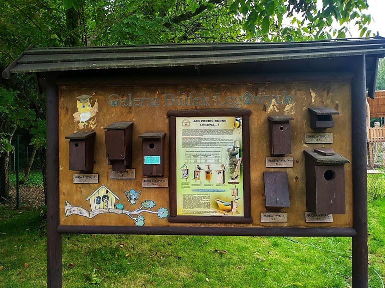 centrum edukacji przyrodniczo-leśnej Powsin