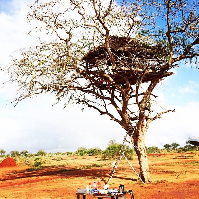 Treehouse and site of first date in Kenya, ManAboutWorld gay travel magazine