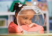 Schoolgirl (4-5) looking at goldfish