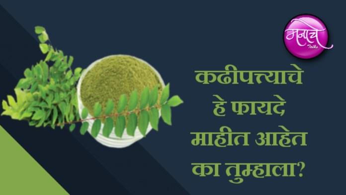 कढीपत्त्याचे फायदे Benefits of curry leaves