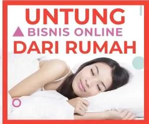 Untung Bisnis Online Dari RUMAH