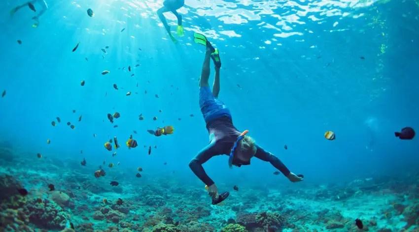 muck diving selat lembeh