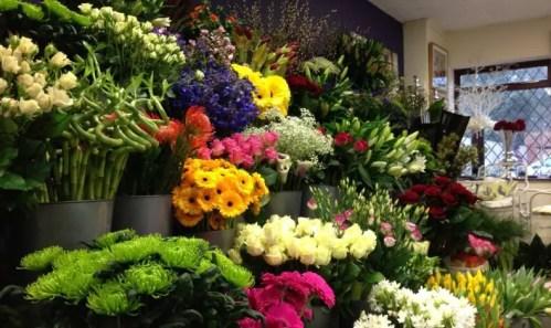 Amarylis Florist Manado