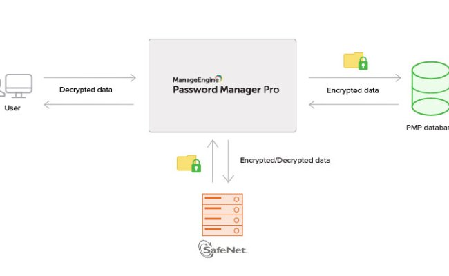 Hardware Security Module Hsm Data Encryption With Safenet