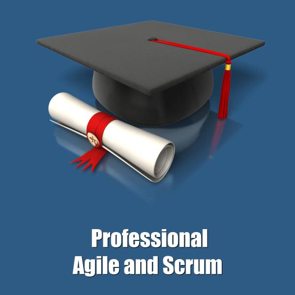 Professional Agile and Scrum - Blue   Management Square