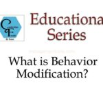 Steps of Organizational Behaviour Modification (OB Mod.) | Organizational Behaviour