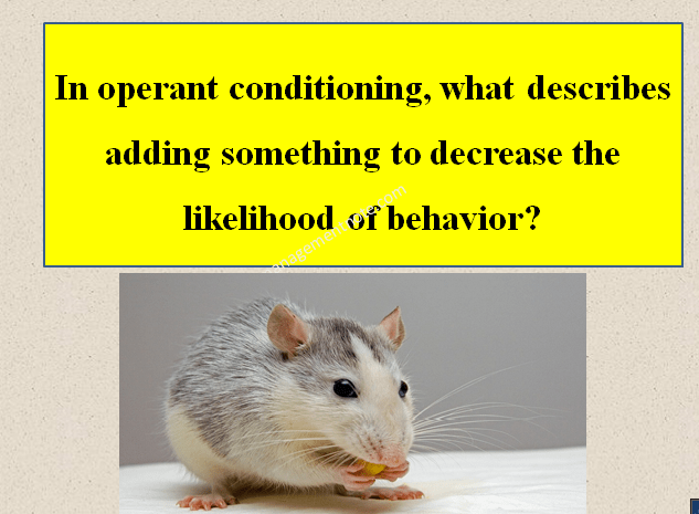 In operant conditioning, what describes adding something to decrease the likelihood of behavior?