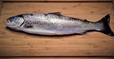 filetowanie ryb w restauracji