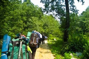 Solang path off road