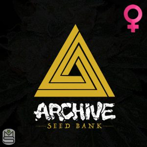 Archive Seed Bank – Tropical Fusion
