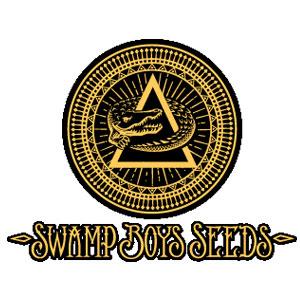 Swamp Boys Seeds