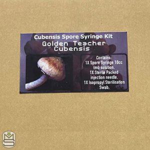 Cubensis Spore Syringe Kit – Golden Teacher
