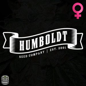 Humboldt Seed Company – The Bling