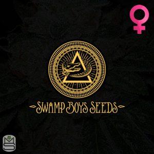 Swamp Boys Seeds – Horace