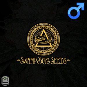 Swamp Boys Seeds – OBTK