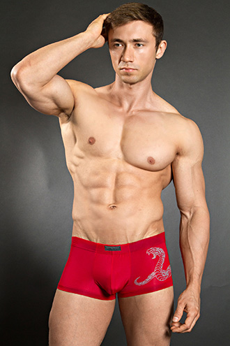 HOM Ornament Snake Hipster Red