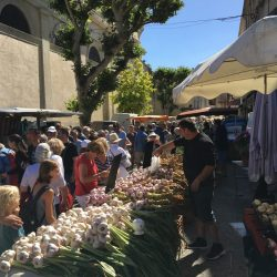 Market in Saint-Rémy-en-Provence