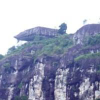 Sampuraga Juga Ada di Kalimantan