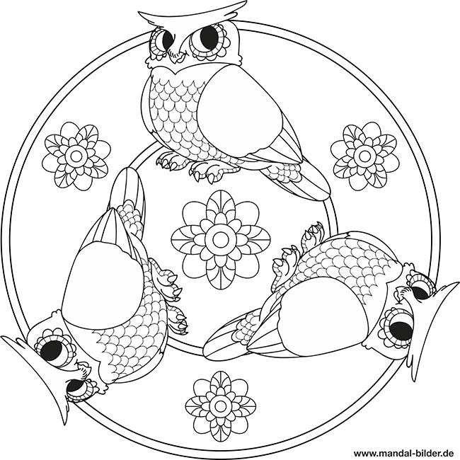 Mandala Eule - Malvorlage für Kinder zum Ausmalen