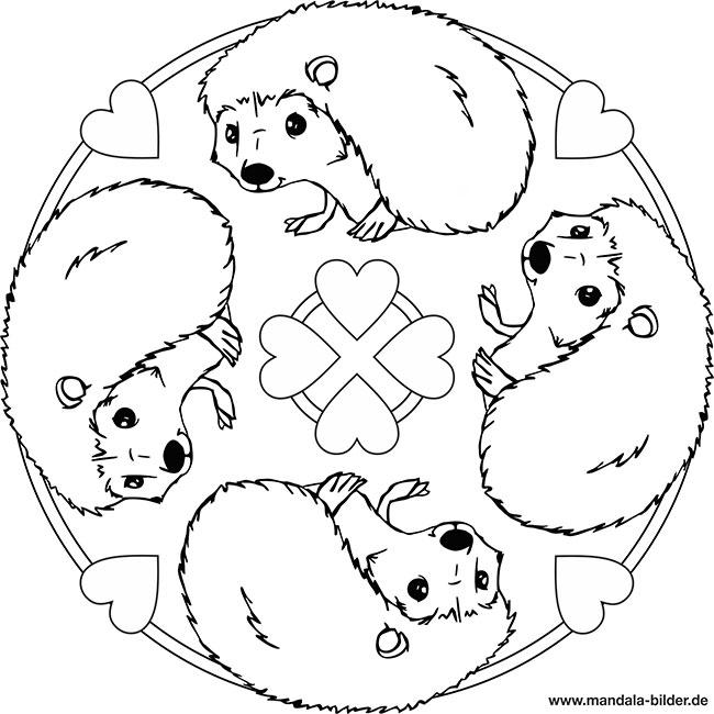 Mandala Igel - Kostenlose Ausmalbilder für Kinder