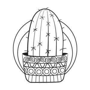 mandala de cactus