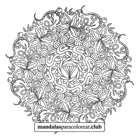 mandala de flores y hojas