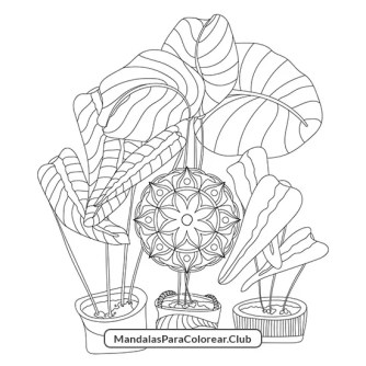 Mandala de Plantas