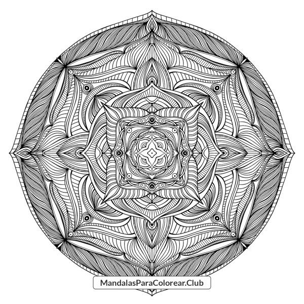 Mandala Floral Complejo para Colorear