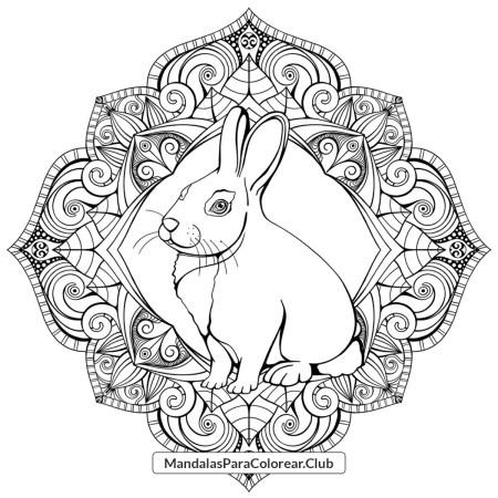 Mandala de Conejo en PDF JPG PNG