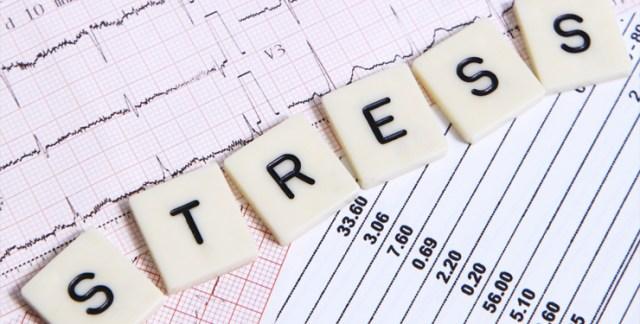 Risultati immagini per stress
