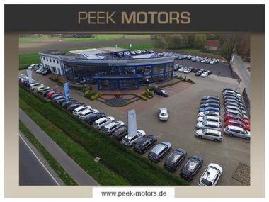 NOUVEAU +++ sonstige Voiture d'occasion: sonstige andere Gazelle PKW Transporter für 7190 € +++ Les meilleures offres | Autres, 19980 km, 2006, Diesel, 110 CV, Bleu | 134561519 | auto.de