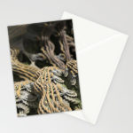 """Cascade Advance"" - Matthew Haggett - Greeting Card Set"