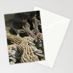 """Cascade Advance"" - Matthew Haggett - Greeting Card Set"
