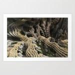 """Cascade Advance"" - Matthew Haggett - Fine Art Print"