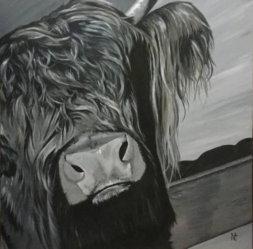 Else - Highland cow