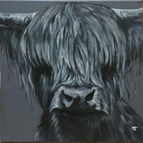MacintoshMorlich - Highland bull