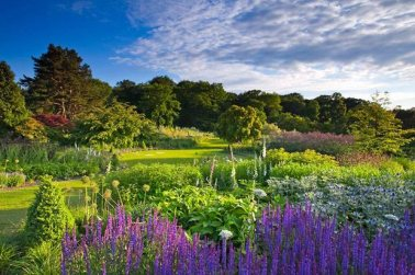 Harlow Carr's borders