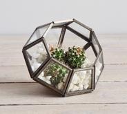 Terrarium - miniature indoor planter, from Decorator's Notebook